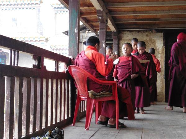 nepal-monastere-chailsa-moines